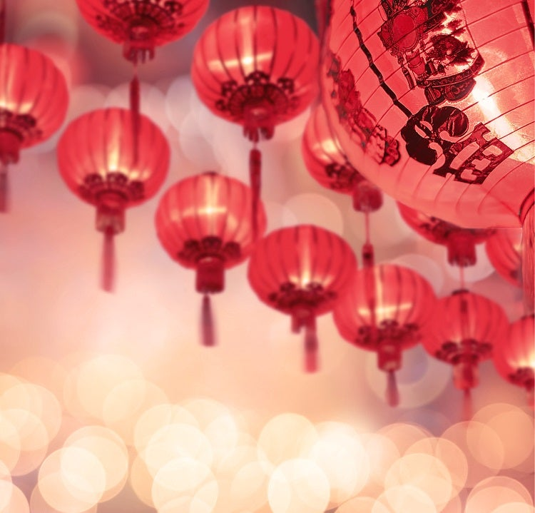 Chinese New Year 2019: it's the Year of the Pig