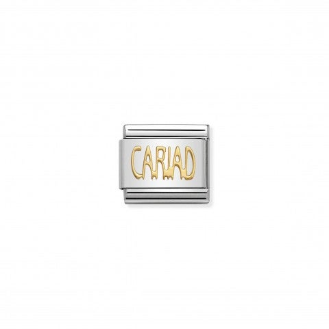 Link_Composable_Classic_in_Oro_CARIAD_Link_in_Acciaio_e_Oro_Messaggi_dal_Galles
