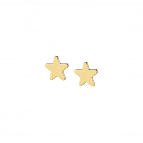 Earrings_with_9K_Gold_Star_Pendant_Stainless_steel_earrings_with_Star_pendant_in_9K_gold